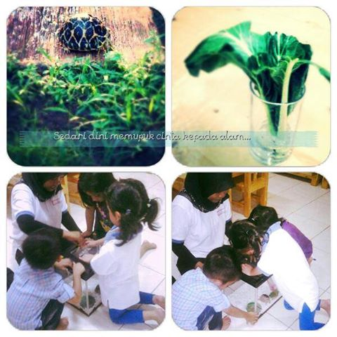 Belajar mencintai alam dengan dan dari berbagai macam cara.. Terimakasih Tuhan atas segalanya yang k...